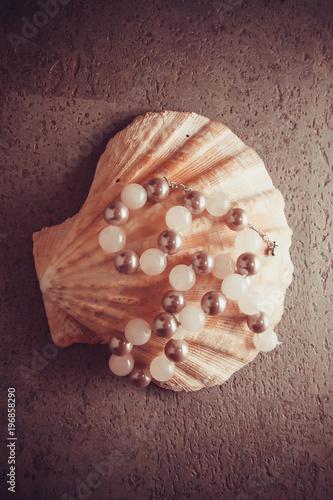 Fotografie, Obraz  pearl shell, source of calcium