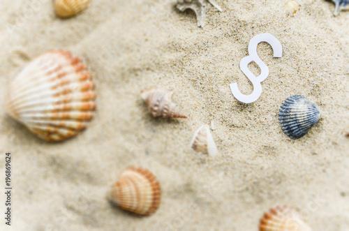Fototapeta Paragraph im Sand