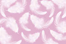 White Feather Texture On Pink ...