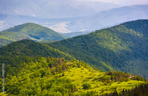 Tuinposter Groen blauw beautiful rolling hills of Carpathian mountains. lovely summer landscape, bird eye view