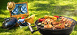 canvas print picture - Barbecue picnic