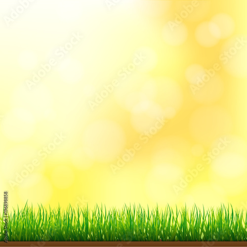 Poster Printemps Natural Green Grass Background with Focus and Bokeh