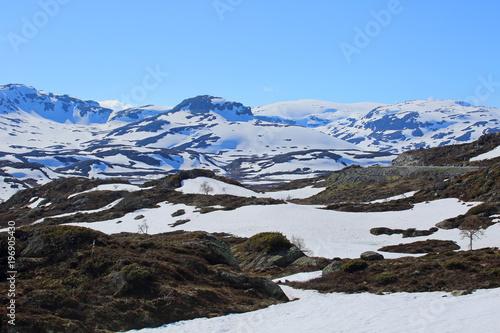 Staande foto Grijze traf. Spring valley landscape