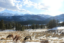 Rocky Mountain National Park, ...