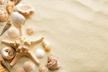 Seashells And Starfish On Sand...