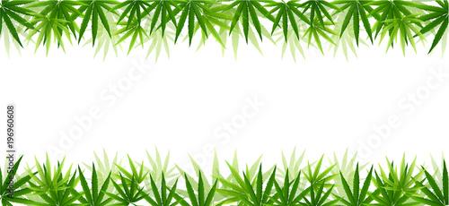 Frame formed with hemp (marijuana) leaves isolated on white. Wallpaper Mural