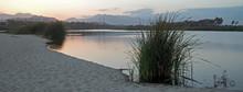 San Jose Del Cabo Estuary At Sunset In Baja California Mexico BCS
