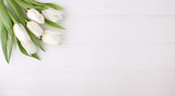 Fototapeta Tulipany - Bouquet of white tulips on a white wooden table, copy space. Easter.