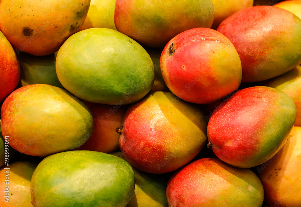 Fototapeta lot of red fresh mango fruits