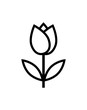 tulip flower icon