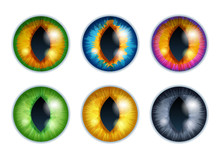 Fantasy Eyes Set - Assorted Co...