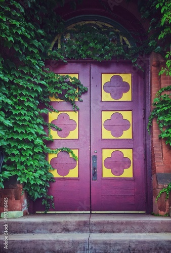 Vintage Purple Door And Ivy Leaves Buy This Stock Photo
