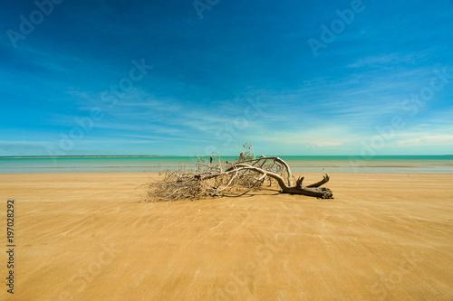 Fotografia Mindil Beach - Australia