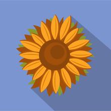Tall Sunflower Icon. Flat Illu...