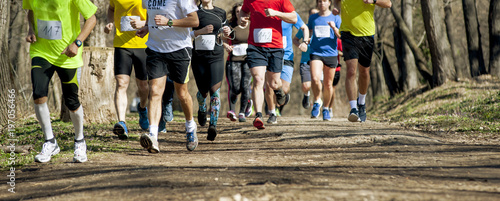 Fotografie, Obraz  Marathon race  at spring