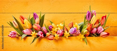 Obraz na plátně Easter or Spring banner with colorful flowers