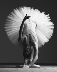 Obraz na SzkleYoung beautiful ballerina is posing in studio