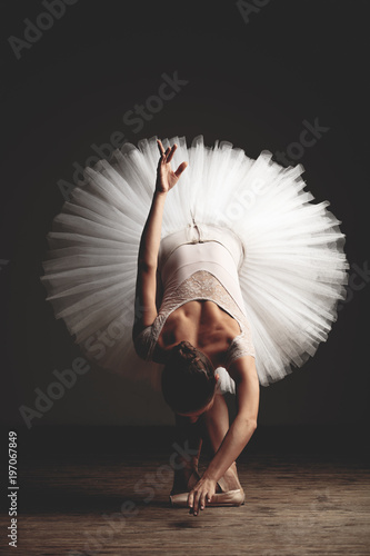 Obraz na plátně Young beautiful ballerina is posing in studio