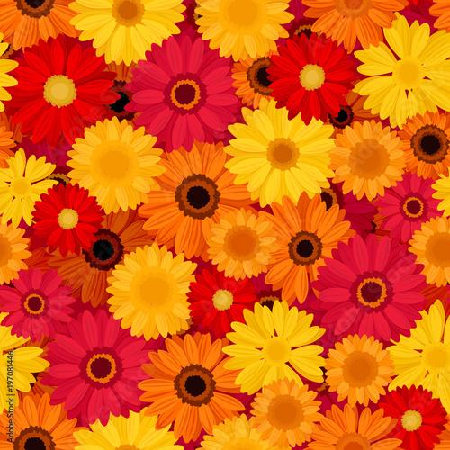Fotobehang Pop Art Vector seamless pattern with red, orange and yellow gerbera flowers.