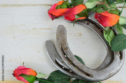 Two old horse shoes with silk red roses on a white-washed rustic wooden background makes a nice image with contrast of silk and steel. Good for Kentucky Derby or any other equestrian theme.