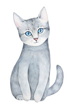 Cute Sitting Kitten Watercolour Portrait. Beautiful Striped Tabby Pattern, Silver Fluffy Fur, Big Blue Round Eyes, Curious Ears, Long Lovely Tail. Hand Drawn Water Color Paint On White, Isolate.