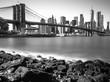 Vista del skyline de NY desde Brooklyn
