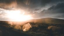 Sunset Wicklow