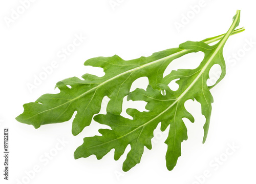 Papiers peints Condiment Rucola or arugula leaf isolated on white background