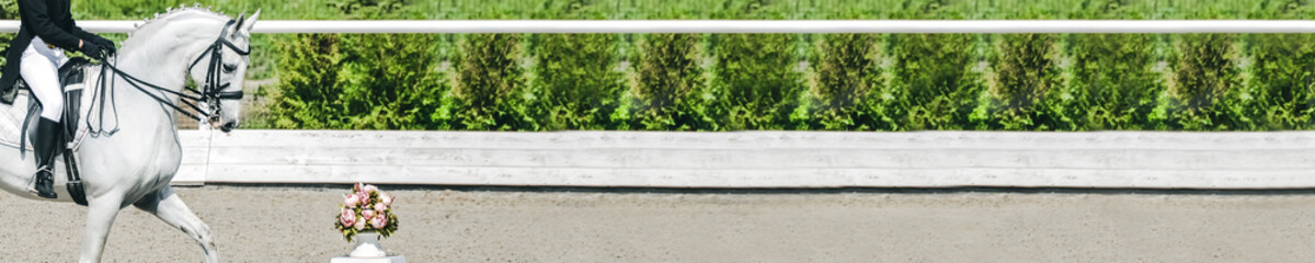Dressage horse and rider in uniform during dressage competition. Horizontal photo banner for equestrian website header design. Copy space for your text.