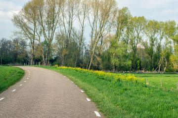 Fototapeta na wymiar Curved country road in a rural landscape
