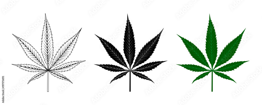 Fototapety, obrazy: Black and Green Cannabis Leaf . Logo Design