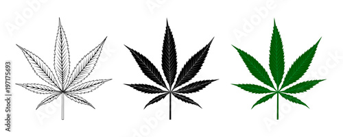 Fényképezés Black and Green Cannabis Leaf . Logo Design