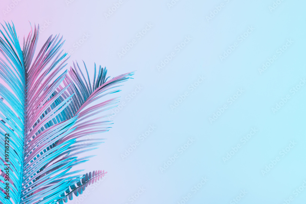 Fototapety, obrazy: Tropical and palm leaves in vibrant bold gradient holographic colors. Concept art. Minimal surrealism.