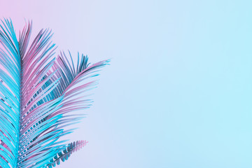Tropical and palm leaves in vibrant bold gradient holographic colors. Concept art. Minimal surrealism.