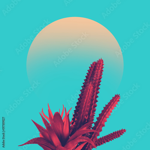 Obraz Cactus duotone in vibrant bold gradient holographic colors. Concept art. Minimal surrealism. - fototapety do salonu