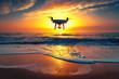 Leinwandbild Motiv Beautiful morning over the sea and flying drone