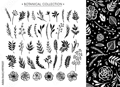 Foto  Botanical collection with floral pattern