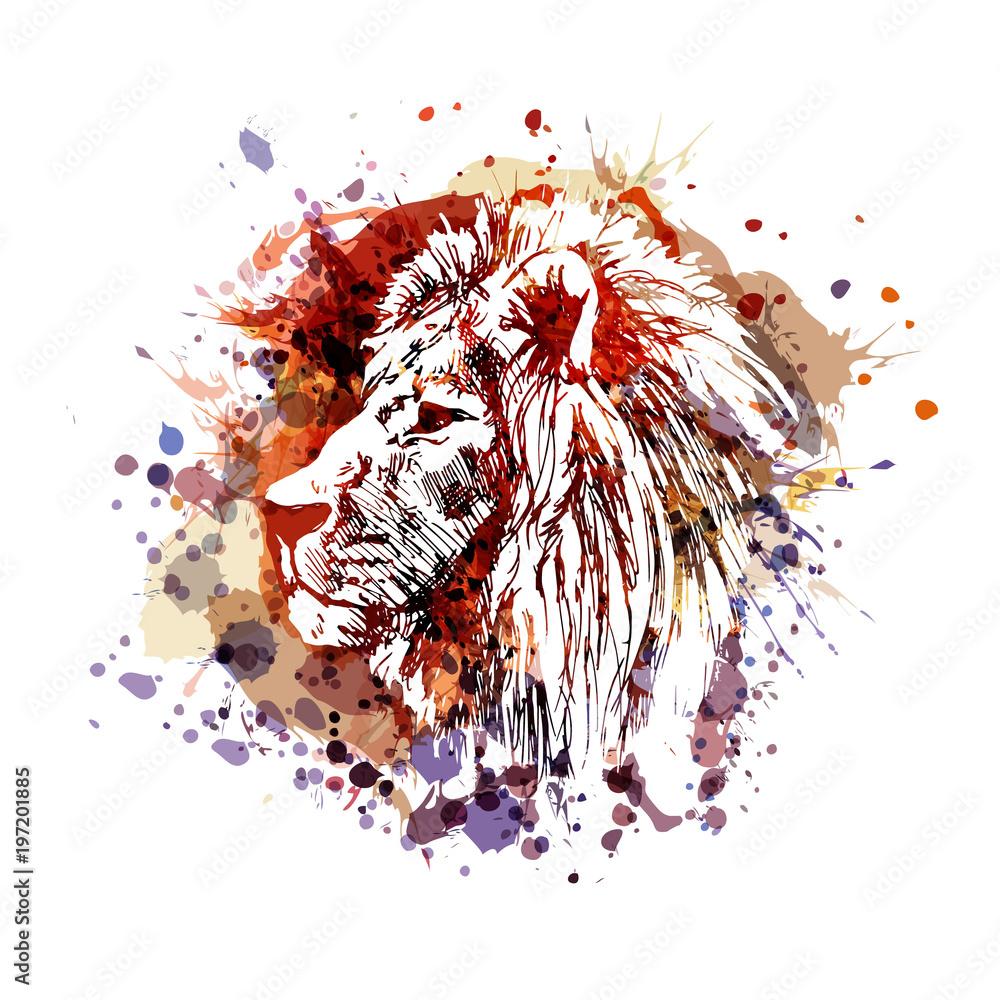 Fototapeta Vector color illustration of lion head