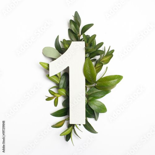 Fototapeta Number one shape with green leaves. Nature concept. Flat lay. Top view obraz
