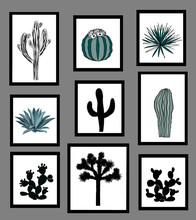 Wall Pictures Sat With Black And White Silhouettes Of Cactus, Agave, And Prickly Pear. Vector Illustration