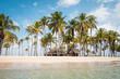 Beach hut, palm trees on small island