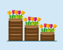 Flowers In Boxes. Flowers In Boxes In Flat Style. Flowers In The Boxes In The Warehouse. Flowers In The Boxes In The Warehouse In Flat Style. Vector Illustration Eps10 File