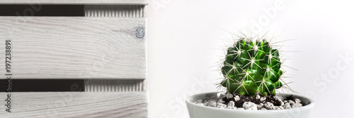 Foto op Canvas Cactus Panoramic view of a desk against a white empty wall with natural wooden boards and a cactus in a ceramic pot