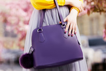 Close Up Photo Of Trendy Viole...