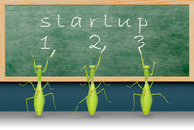 Startup Campaign By Mantises