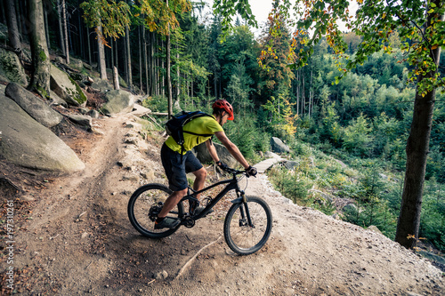 Mountain biker riding cycling in autumn forest Fototapet