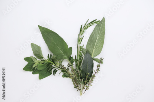 Fotografía  Variety of fresh herbs for cooking with thyme, laurel or bay leaf, oregano, rose