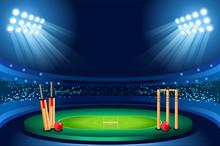 Cricket Stadium Vector Backgro...