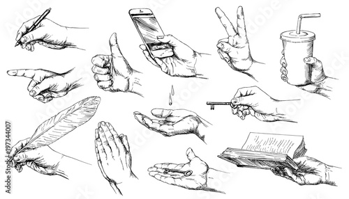 Obraz Set of hand drawn hands. - fototapety do salonu