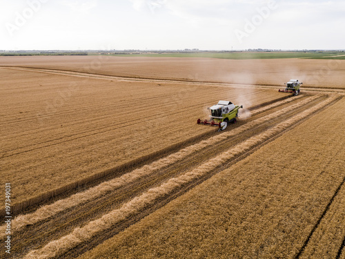 Combine harvester on a field of wheat, aerial view.